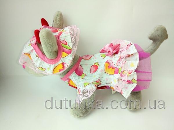 Платье с панамкой для собачки Чи Чи Лав Конфетка (Ч406) Dutunka